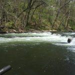 Goat Hole. Watauga River, TN