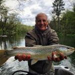 South Holston, TN brown trout