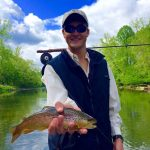 S. Holston brown trout-
