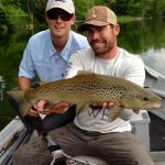 South Holston River, TN brown trout