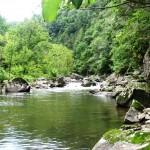 nc small stream